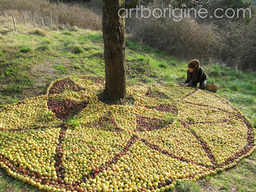 Les Pommes de Rainette et Pommes Tapis